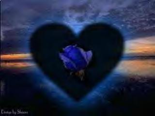 Herz bei Nacht